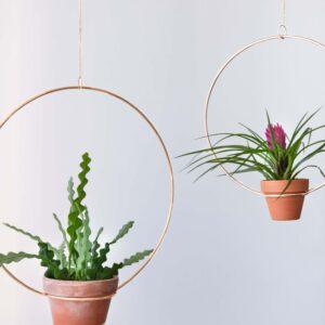 Plant Hanger Bitki Askısı Saksı