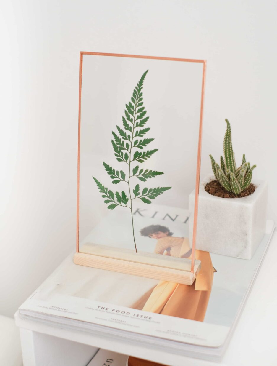 copper bakır şoklanmış bitki çerçevesi eğreti otu fern dikey
