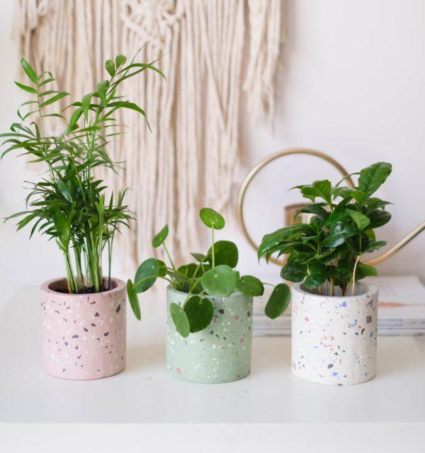 terrazzo saksı planter