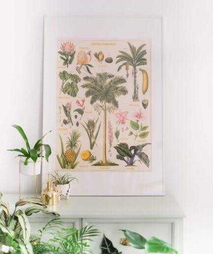 Vintage Botanik Posteri Tropikal Bitkiler, Tropical