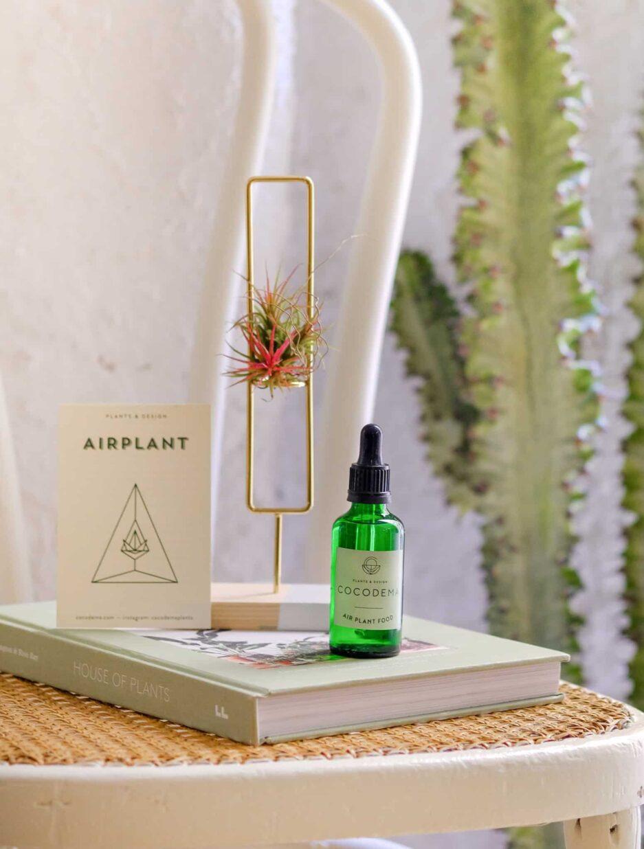 Airplant Besini Hava Bitkisi Gübresi Airplant Food
