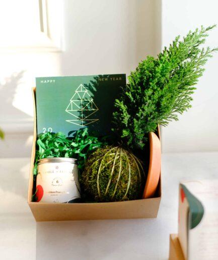 Stay Home Box; mum, pine cocodema ve tebrik kartı içerir.
