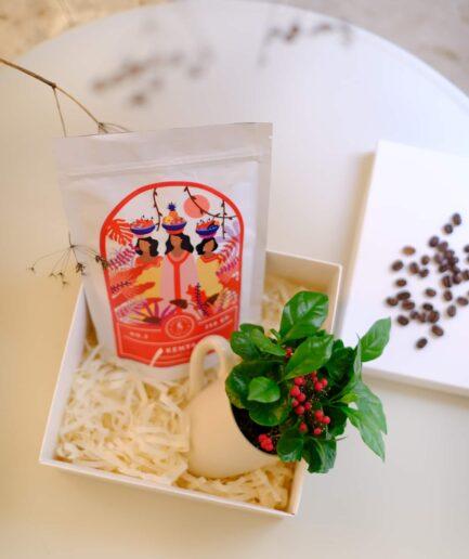 the coffee lovers box, kahvesever hediye kutusu