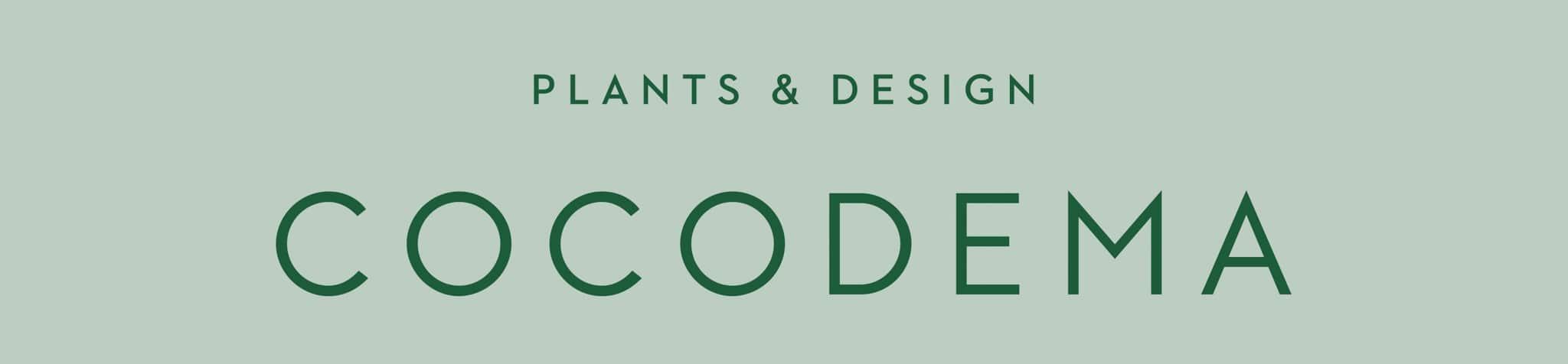 C O C O D E M A | Yaşayan Bitki Tasarımları