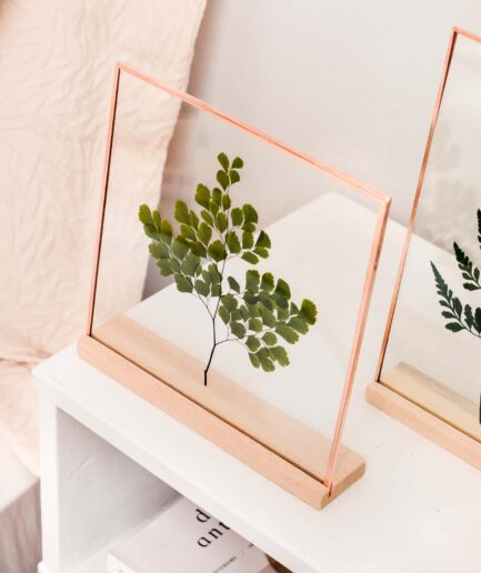 yeşil adiantum maiden hair fern copper çerçeve frame