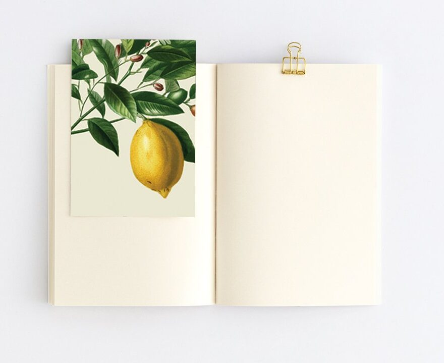 citrus limon çizgisiz dikişli defter
