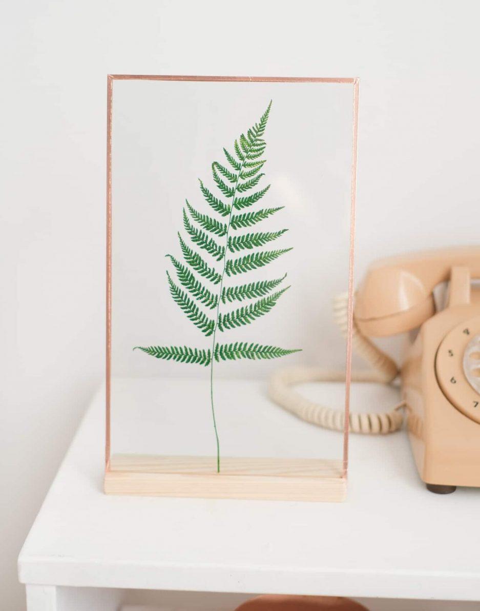 Fern Eğrelti Otu Şoklanmış Bitki Çerçevesi Copper